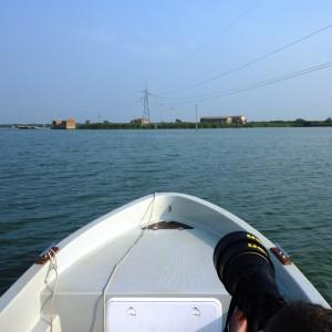 Navigando il Delta
