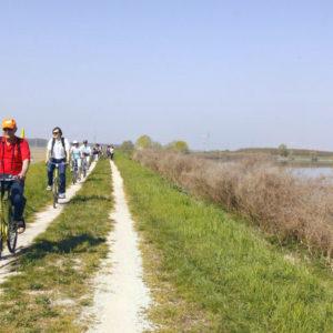 Bike & boat nel Parco del Delta del Po