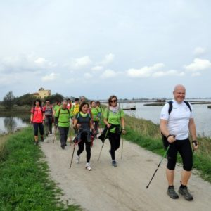 Nordic Walking in Valle