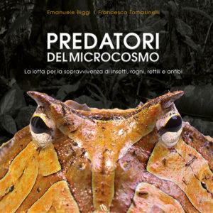 Predatori del microcosmo, la lotta per la sopravvivenza di insetti, ragni, rettili e anfibi