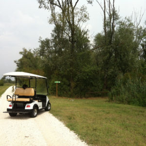 In golf car nelle Valli di Argenta