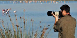 Photo Contest: più fotografi, più vinci