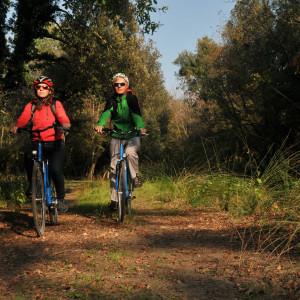Due ruote nel bosco