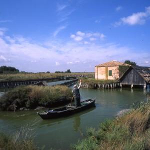 In barca nelle Valli di Comacchio