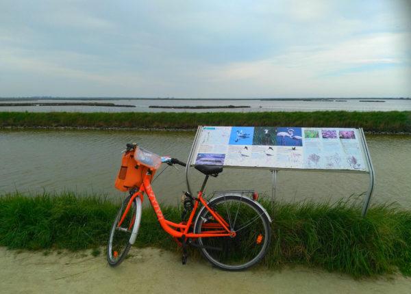 Alla scoperta del delta del Po